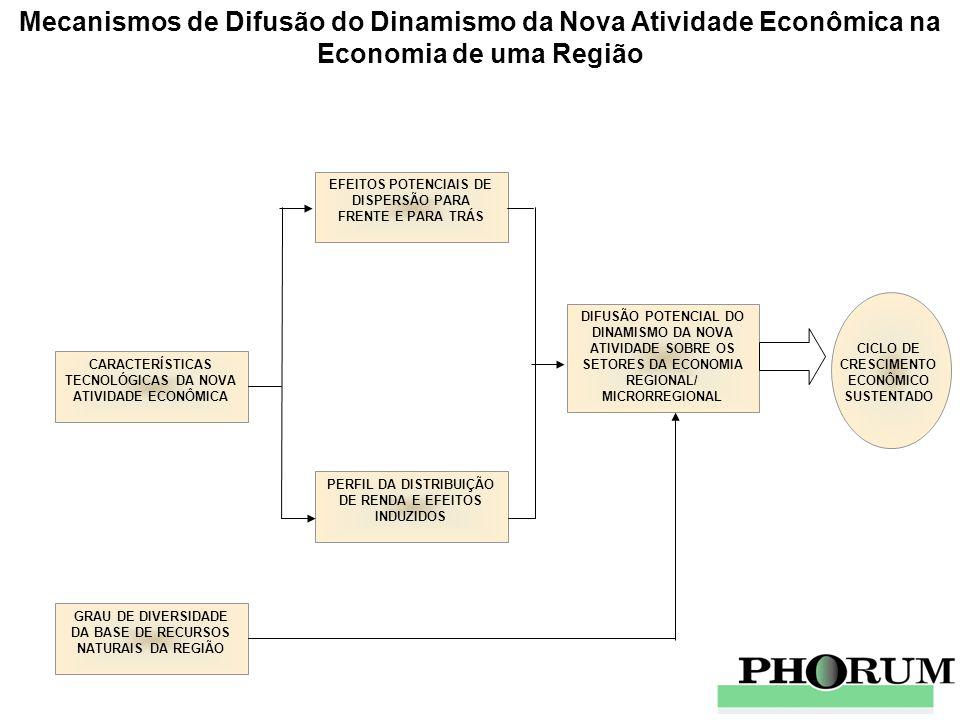 Efeitos Multiplicadores Regionais de um Projeto de Investimento EMPREGO DIRETO E TERCEIRIZADO COMPRAS DIRETAS ANUAIS MASSA SALARIAL DIRETA E TERCEIRIZADA ANUAL MULTIPLICADOR REGIONAL DE EMPREGO EMPREGO TOTAL DIRETO, INDIRETO E INDUZIDO MULTIPLICADOR REGIONAL DE COMPRAS MULTIPLICADOR REGIONAL DE MASSA SALARIAL COMPRAS TOTAIS DIRETAS, INDIRETAS E INDUZIDAS MASSA SALARIALTOTAL DIRETA, INDIRETA E INDUZIDA FASE OPERAÇÃO PLENA