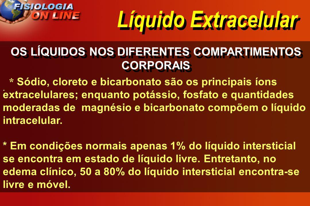 Líquido Extracelular OS LÍQUIDOS NOS DIFERENTES COMPARTIMENTOS CORPORAIS · · * Sódio, cloreto e bicarbonato são os principais íons extracelulares; enq
