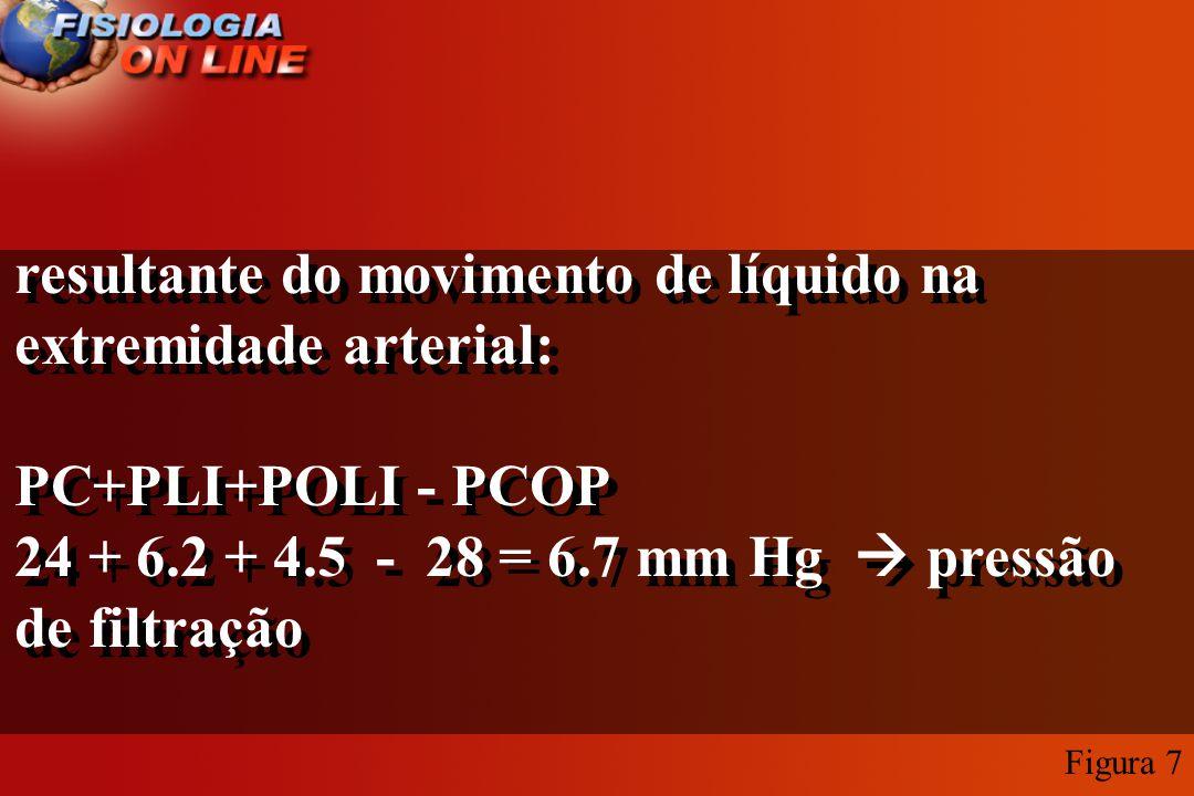 resultante do movimento de líquido na extremidade arterial: PC+PLI+POLI - PCOP 24 + 6.2 + 4.5 - 28 = 6.7 mm Hg pressão de filtração resultante do movi