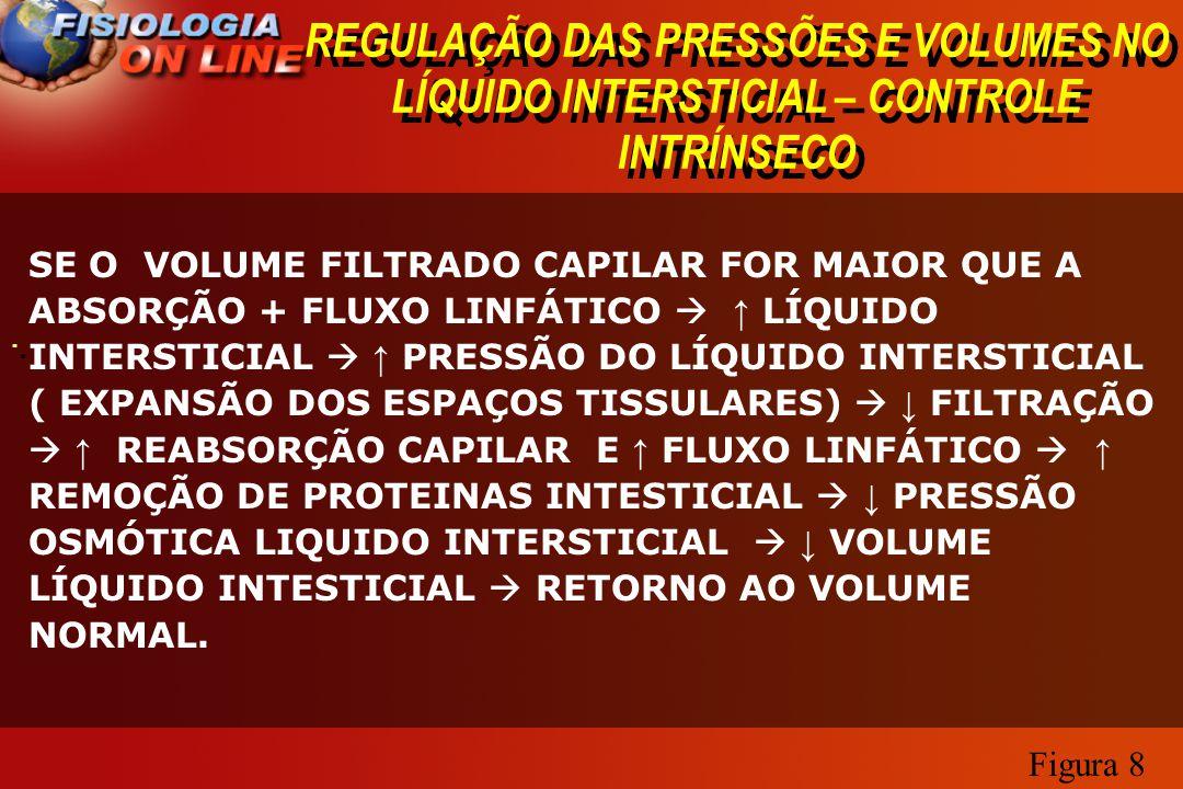 REGULAÇÃO DAS PRESSÕES E VOLUMES NO LÍQUIDO INTERSTICIAL – CONTROLE INTRÍNSECO · · SE O VOLUME FILTRADO CAPILAR FOR MAIOR QUE A ABSORÇÃO + FLUXO LINFÁ