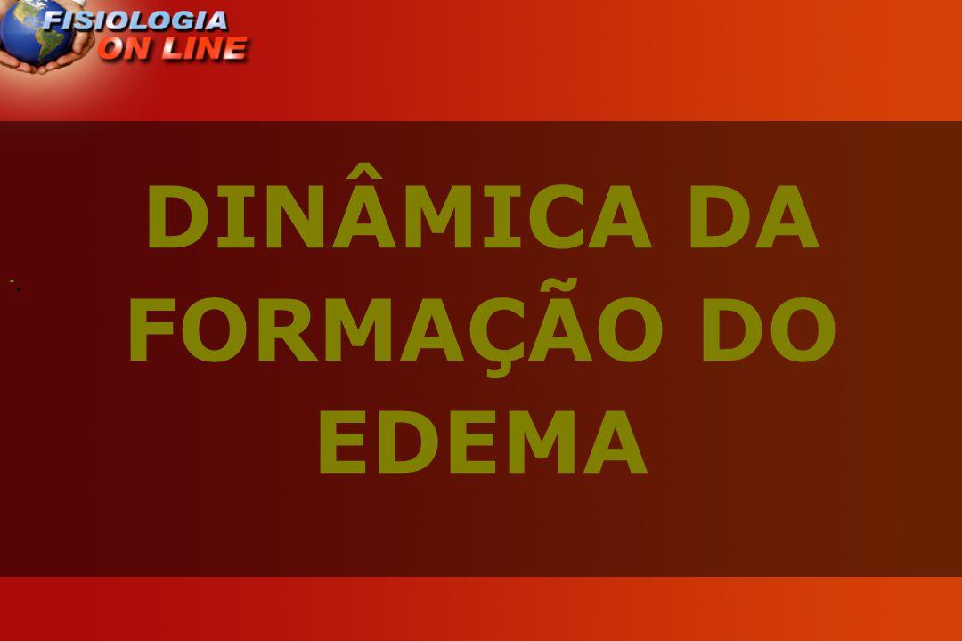 · · DINÂMICA DA FORMAÇÃO DO EDEMA