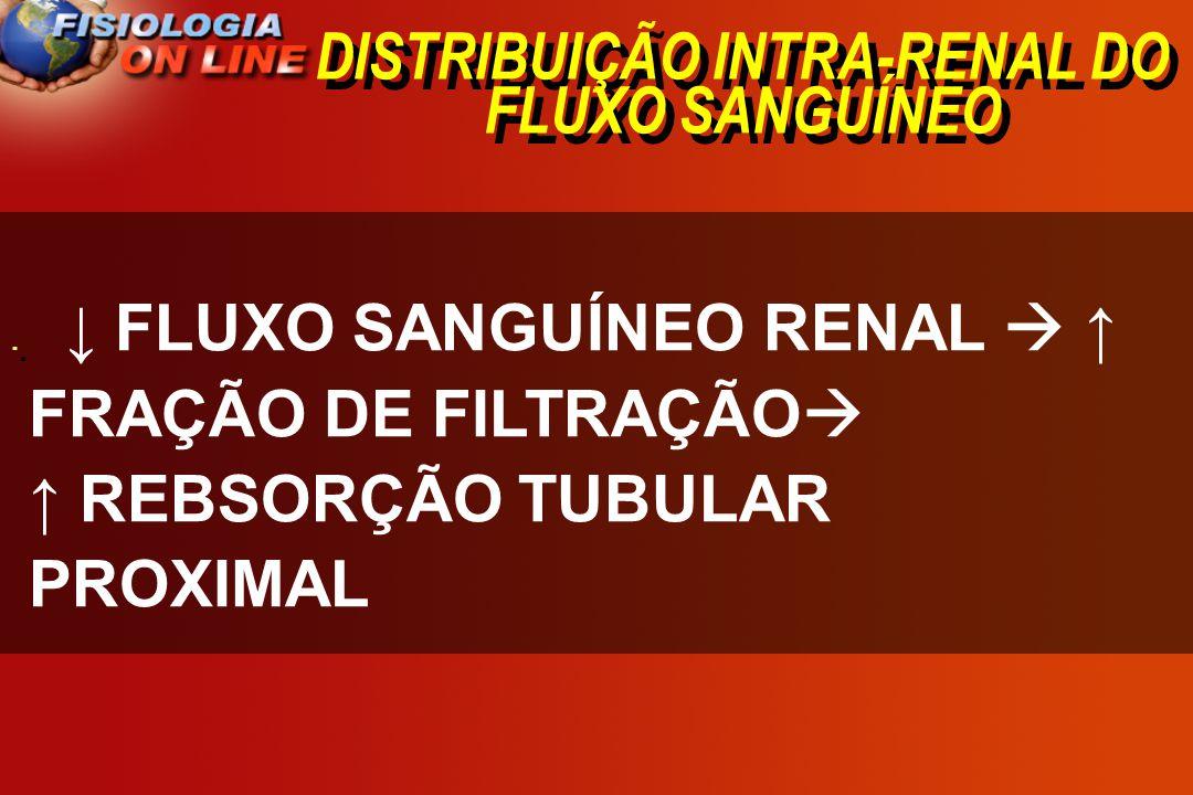 DISTRIBUIÇÃO INTRA-RENAL DO FLUXO SANGUÍNEO · · FLUXO SANGUÍNEO RENAL FRAÇÃO DE FILTRAÇÃO REBSORÇÃO TUBULAR PROXIMAL