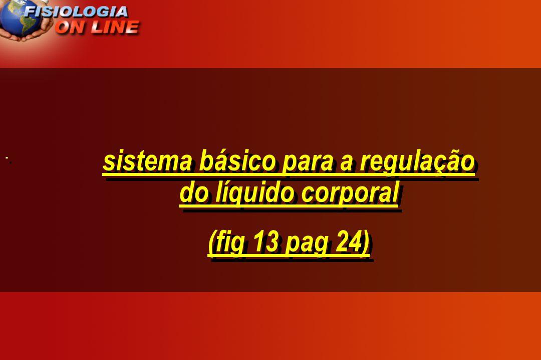 sistema básico para a regulação do líquido corporal (fig 13 pag 24) sistema básico para a regulação do líquido corporal (fig 13 pag 24) · ·