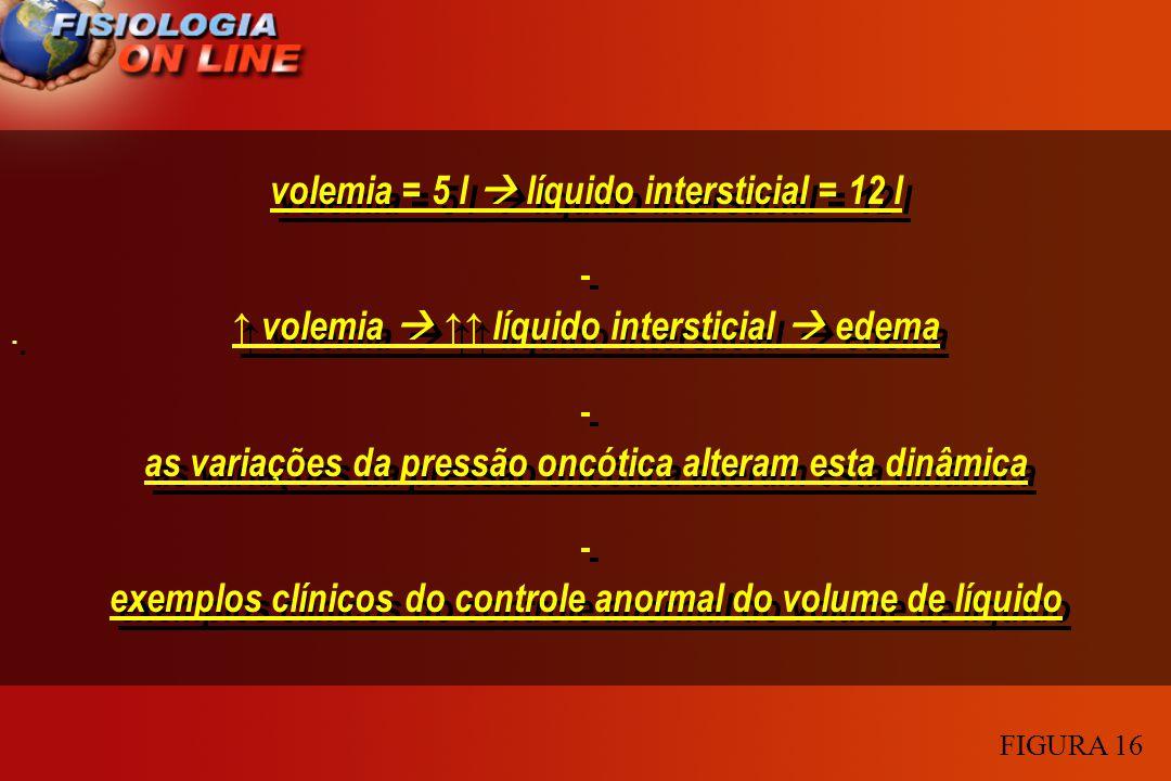 volemia = 5 l líquido intersticial = 12 l volemia líquido intersticial edema as variações da pressão oncótica alteram esta dinâmica exemplos clínicos
