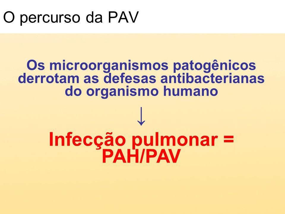 O percurso da PAV Os microorganismos patogênicos derrotam as defesas antibacterianas do organismo humano Infecção pulmonar = PAH/PAV