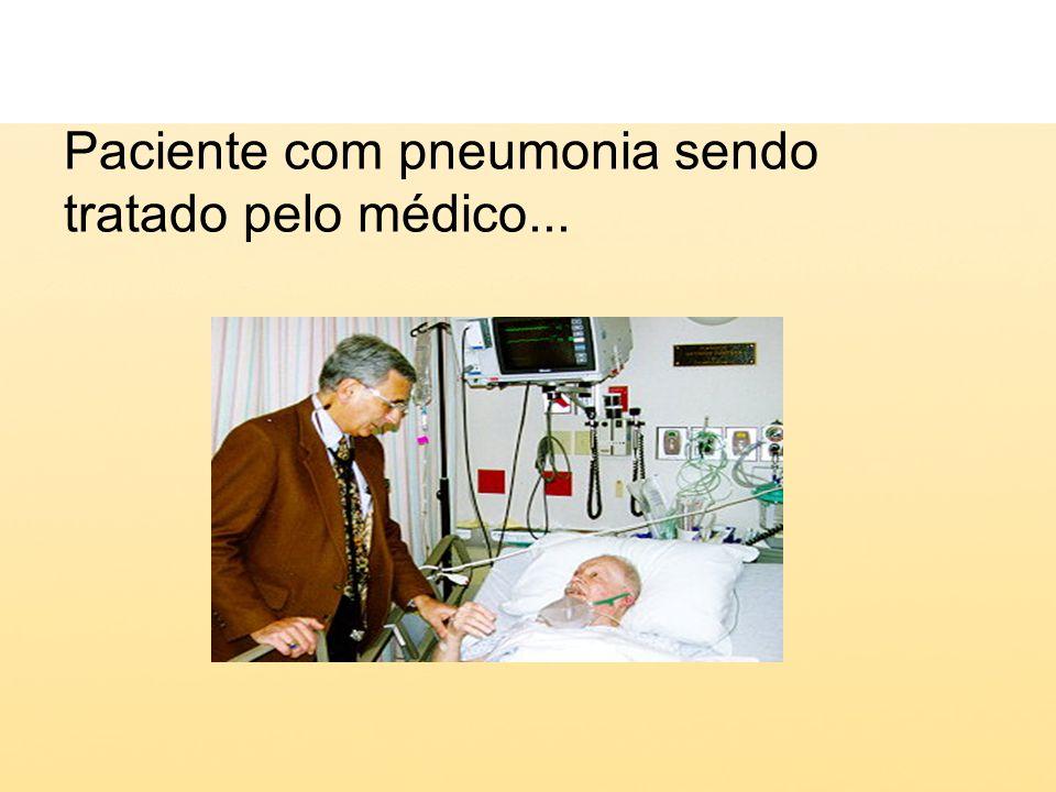 Mortalidade global por pneumonia A pneumonia é a causa de morte mais freqüente no mundo inteiro a maior assassina de crianças a amiga do idoso Carga de doença Índice DALY (anos de vida perdidos ajustados por incapacidade) em 1998 devido a doenças infecciosas, em milhões, todas as idades