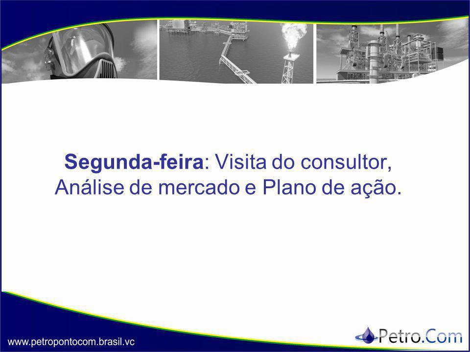 Segunda-feira: Visita do consultor, Análise de mercado e Plano de ação.