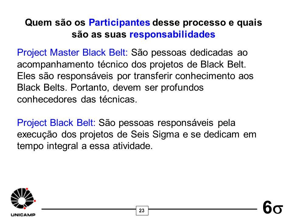 23 6 Quem são os Participantes desse processo e quais são as suas responsabilidades Project Master Black Belt: São pessoas dedicadas ao acompanhamento