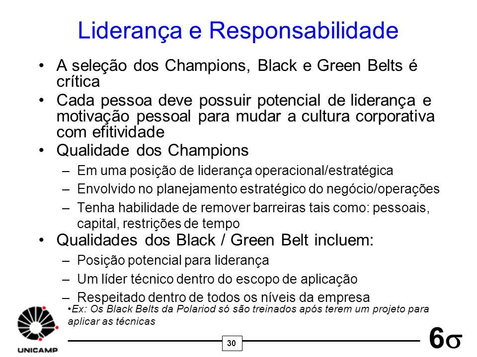 30 6 Liderança e Responsabilidade A seleção dos Champions, Black e Green Belts é crítica Cada pessoa deve possuir potencial de liderança e motivação p