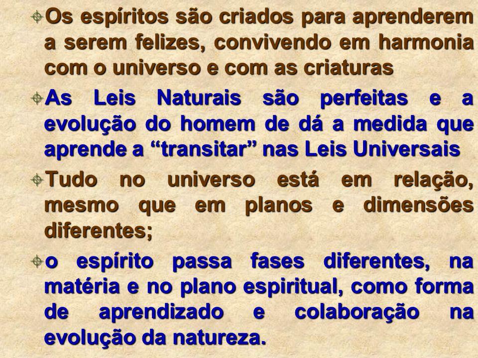 Os espíritos são criados para aprenderem a serem felizes, convivendo em harmonia com o universo e com as criaturas Os espíritos são criados para aprenderem a serem felizes, convivendo em harmonia com o universo e com as criaturas As Leis Naturais são perfeitas e a evolução do homem de dá a medida que aprende a transitar nas Leis Universais As Leis Naturais são perfeitas e a evolução do homem de dá a medida que aprende a transitar nas Leis Universais Tudo no universo está em relação, mesmo que em planos e dimensões diferentes; Tudo no universo está em relação, mesmo que em planos e dimensões diferentes; o espírito passa fases diferentes, na matéria e no plano espiritual, como forma de aprendizado e colaboração na evolução da natureza.