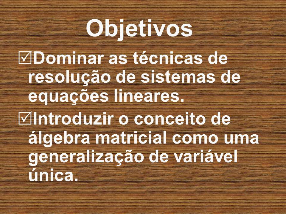 Objetivos Dominar as técnicas de resolução de sistemas de equações lineares. Introduzir o conceito de álgebra matricial como uma generalização de vari