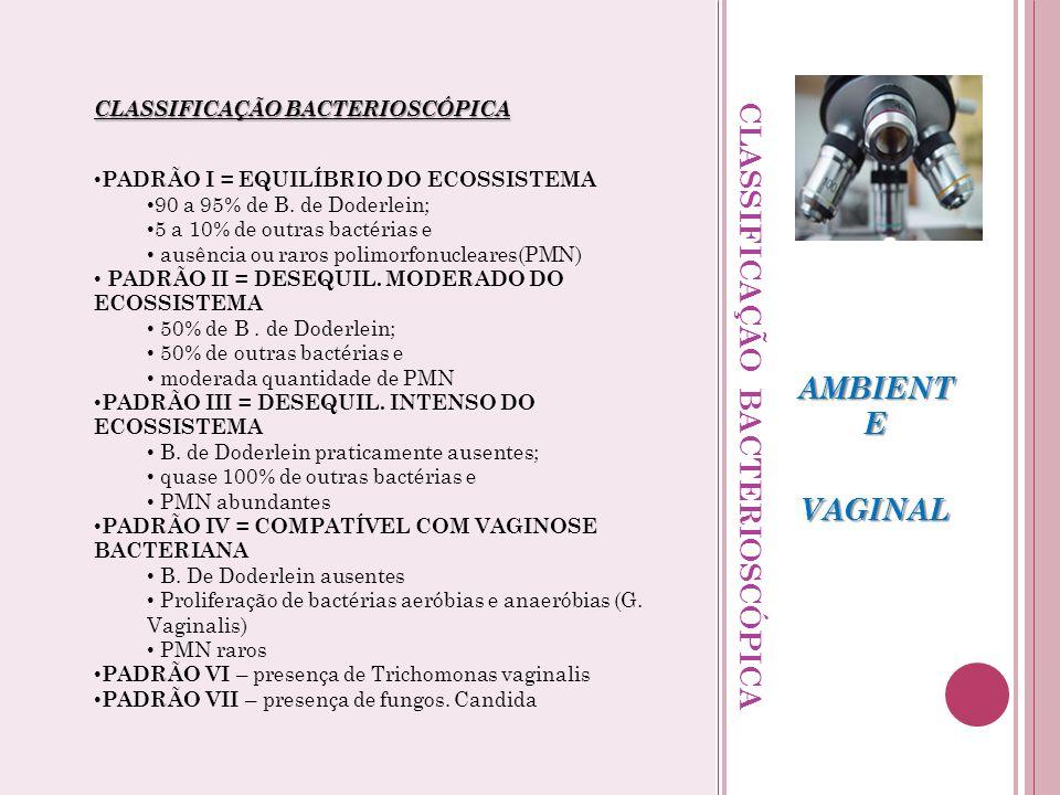 CLASSIFICAÇÃO BACTERIOSCÓPICA AMBIENT E VAGINAL CLASSIFICAÇÃO BACTERIOSCÓPICA PADRÃO I = EQUILÍBRIO DO ECOSSISTEMA 90 a 95% de B. de Doderlein; 5 a 10