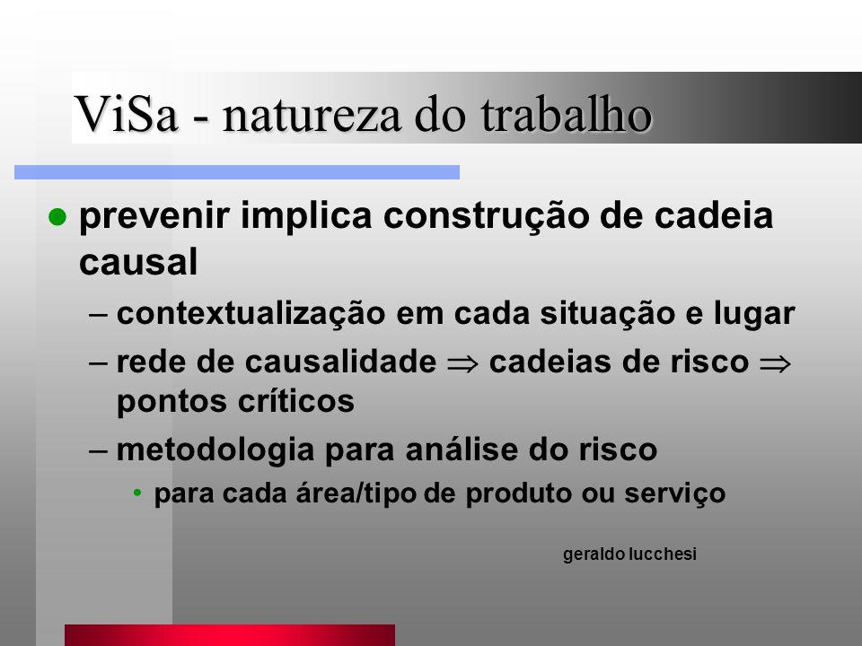 ViSa - natureza do trabalho prevenir implica construção de cadeia causal –contextualização em cada situação e lugar –rede de causalidade cadeias de ri