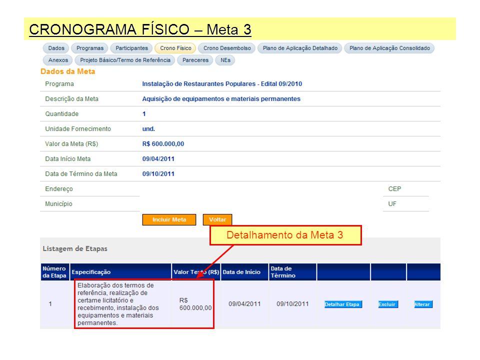 CRONOGRAMA FÍSICO – Meta 3 Detalhamento da Meta 3