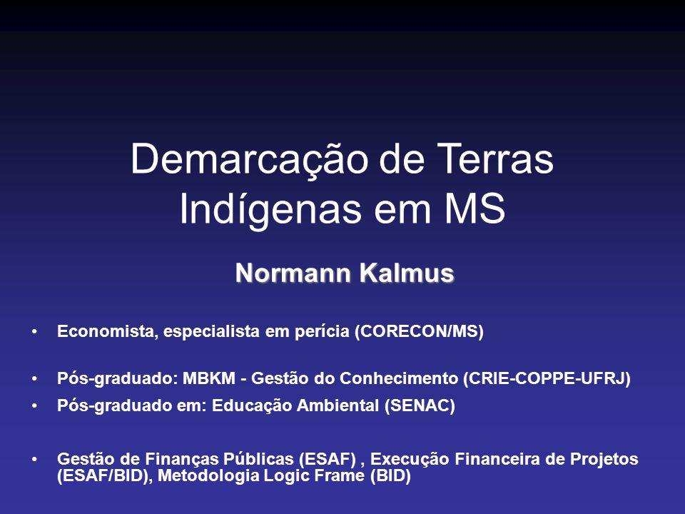 Falácias Narrativas, Fatos e Reflexos Econômicos Reais Demarcação de Terras Indígenas em MS