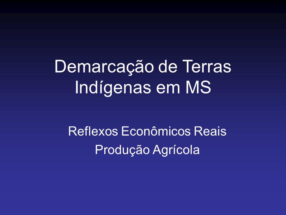 Reflexos Econômicos Reais Produção Agrícola Demarcação de Terras Indígenas em MS