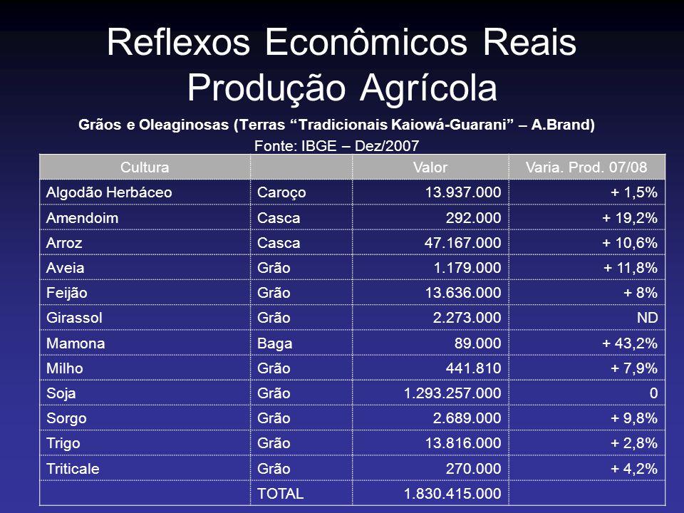 Reflexos Econômicos Reais Produção Agrícola Grãos e Oleaginosas (Terras Tradicionais Kaiowá-Guarani – A.Brand) Fonte: IBGE – Dez/2007 CulturaValorVari