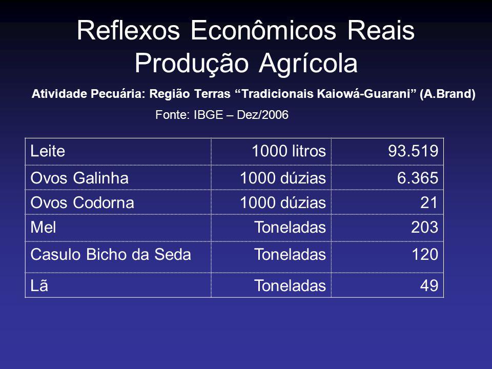 Reflexos Econômicos Reais Produção Agrícola Atividade Pecuária: Região Terras Tradicionais Kaiowá-Guarani (A.Brand) Fonte: IBGE – Dez/2006 Leite1000 l