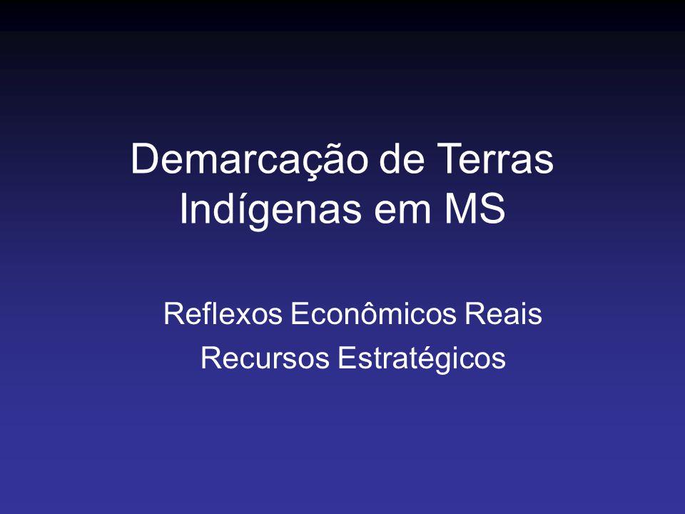 Reflexos Econômicos Reais Recursos Estratégicos Demarcação de Terras Indígenas em MS