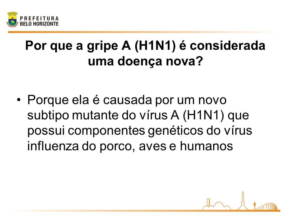 Por que a gripe A (H1N1) é considerada uma doença nova.