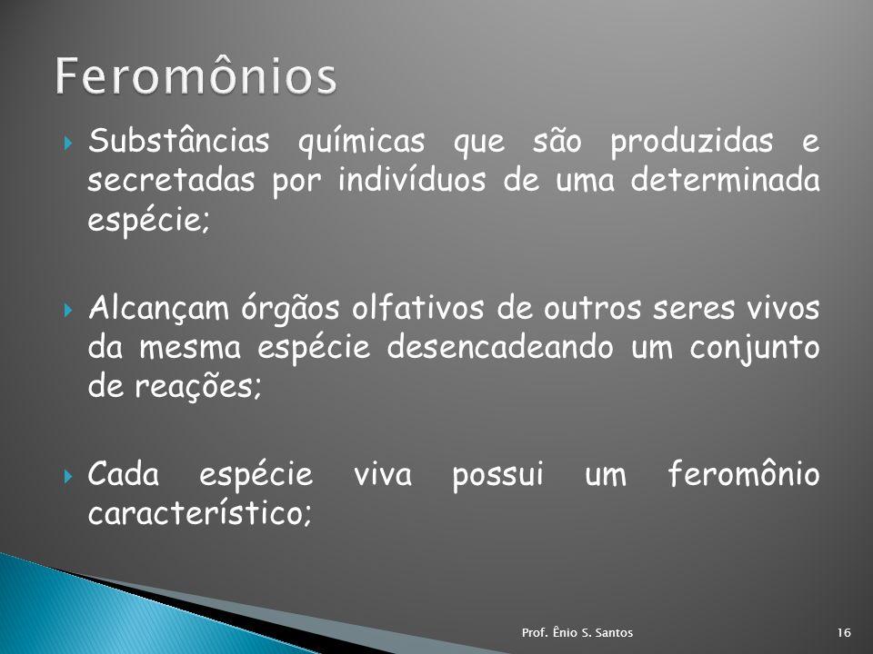 Substâncias químicas que são produzidas e secretadas por indivíduos de uma determinada espécie; Alcançam órgãos olfativos de outros seres vivos da mes