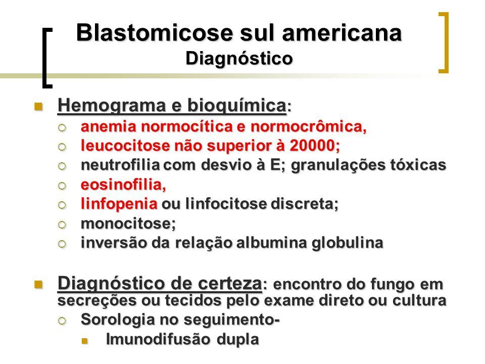 Blastomicose sul americana Diagnóstico Hemograma e bioquímica : Hemograma e bioquímica : anemia normocítica e normocrômica, anemia normocítica e normo