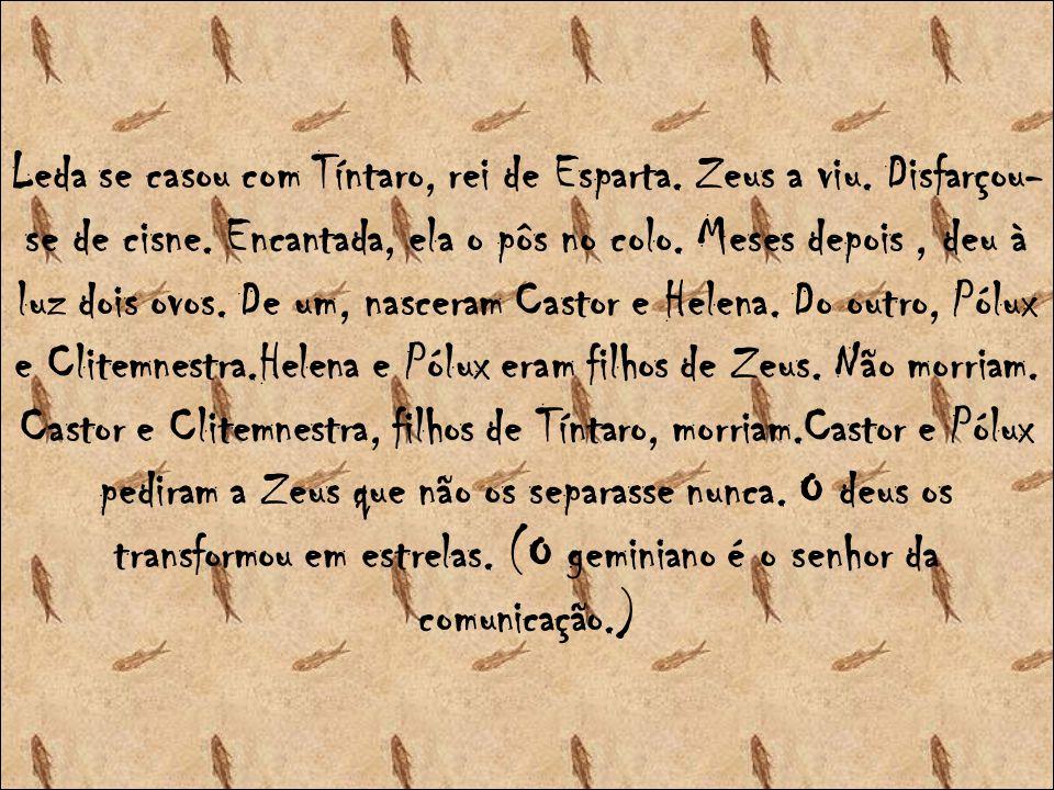 Leda se casou com Tíntaro, rei de Esparta.Zeus a viu.