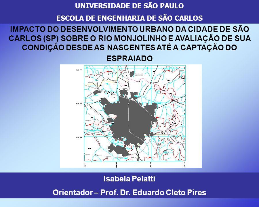 UNIVERSIDADE DE SÃO PAULO ESCOLA DE ENGENHARIA DE SÃO CARLOS IMPACTO DO DESENVOLVIMENTO URBANO DA CIDADE DE SÃO CARLOS (SP) SOBRE O RIO MONJOLINHO E A