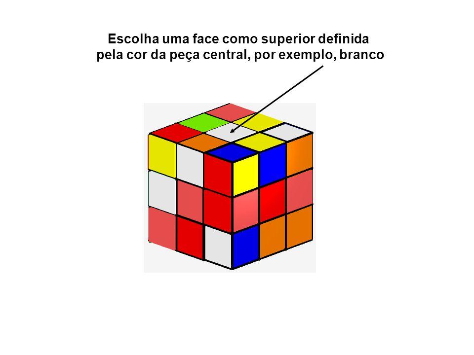 Escolha uma face como superior definida pela cor da peça central, por exemplo, branco