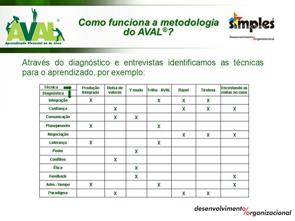 Através do diagnóstico e entrevistas identificamos as técnicas para o aprendizado, por exemplo: Como funciona a metodologia do AVAL ® ?