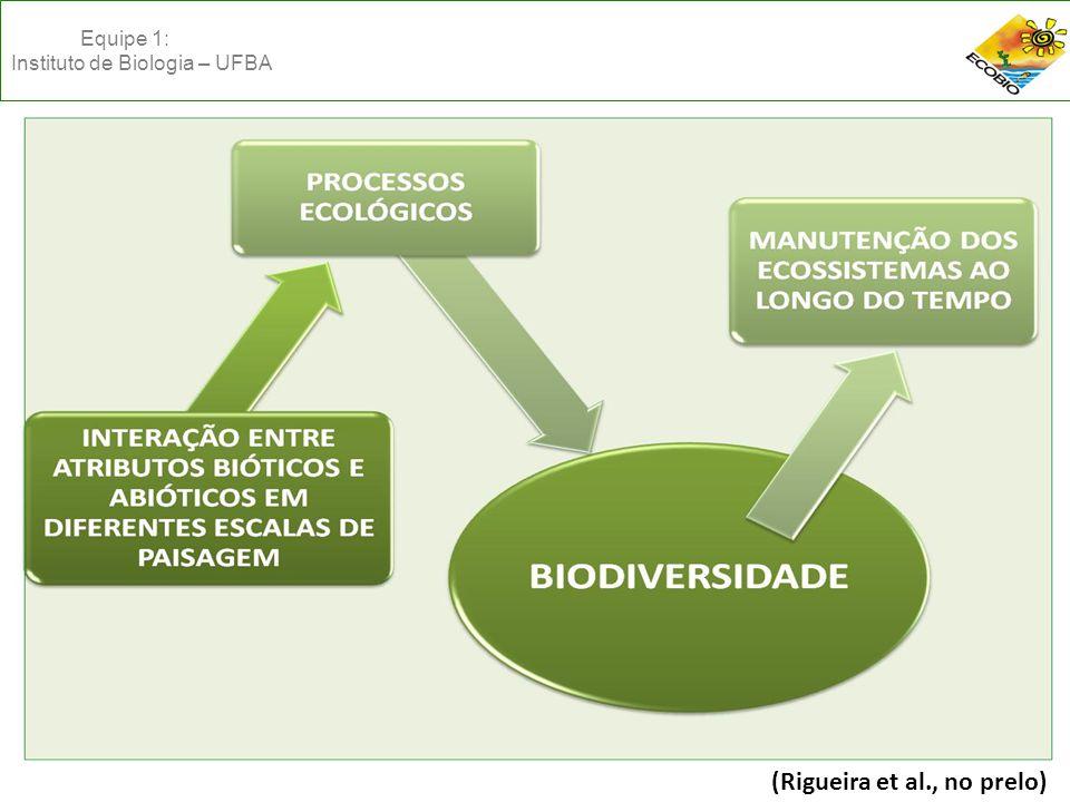 (Rigueira et al., no prelo) Equipe 1: Instituto de Biologia – UFBA