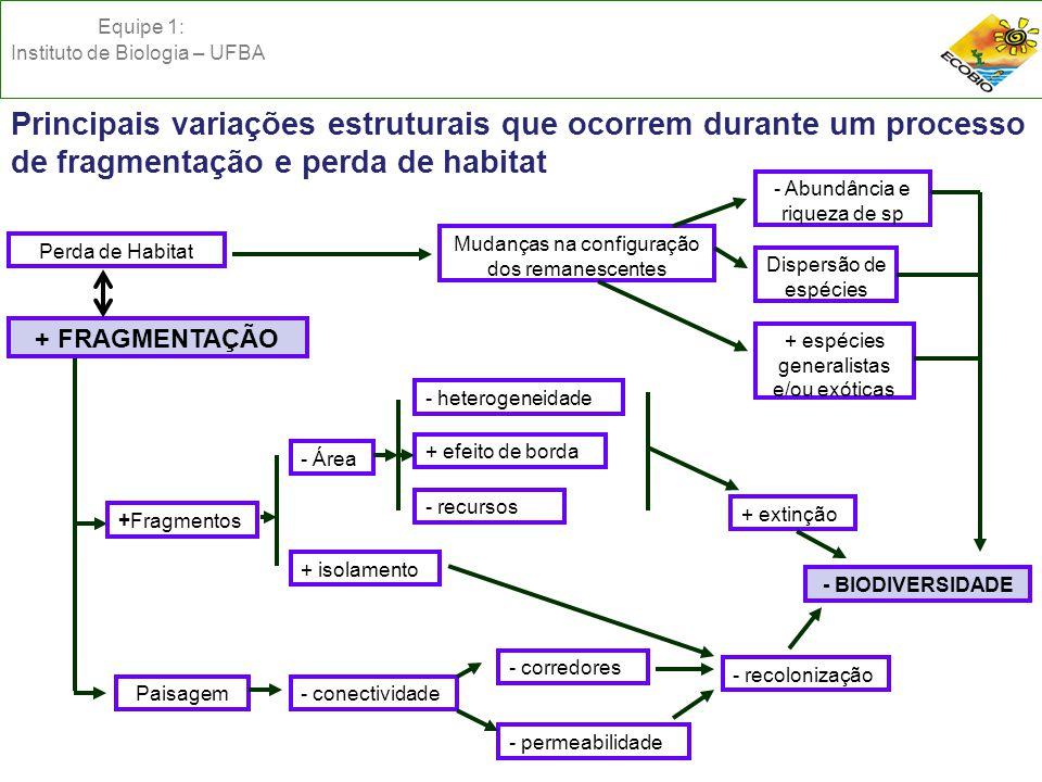 + FRAGMENTAÇÃO Perda de Habitat Dispersão de espécies - Abundância e riqueza de sp + espécies generalistas e/ou exóticas Mudanças na configuração dos remanescentes +Fragmentos Paisagem - Área + isolamento - heterogeneidade + efeito de borda - recursos - conectividade - corredores - permeabilidade - recolonização + extinção - BIODIVERSIDADE Principais variações estruturais que ocorrem durante um processo de fragmentação e perda de habitat