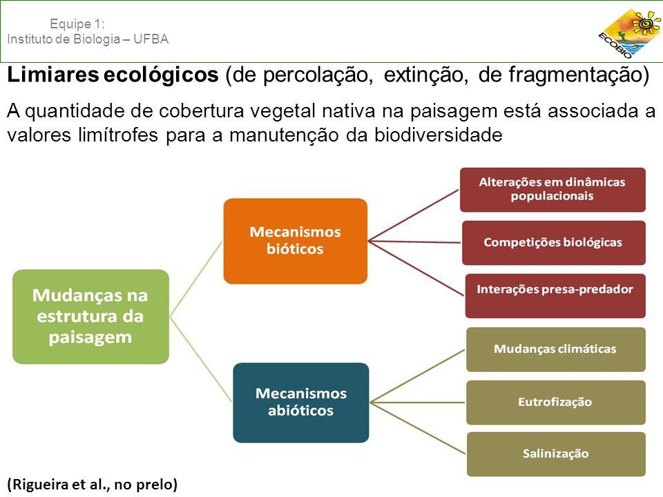 Limiares ecológicos (de percolação, extinção, de fragmentação) A quantidade de cobertura vegetal nativa na paisagem está associada a valores limítrofes para a manutenção da biodiversidade (Rigueira et al., no prelo) Equipe 1: Instituto de Biologia – UFBA