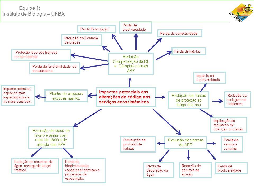 Redução, Compensação da RL e Cômputo com as APP Perda de habitat Perda de conectividade Perda de biodiversidade Perda Polinização Redução do Controle de pragas Proteção recursos hídricos comprometida.