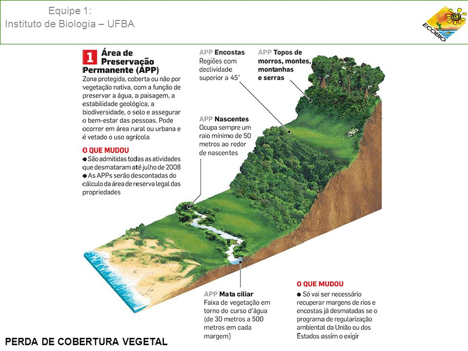 Equipe 1: Instituto de Biologia – UFBA PERDA DE COBERTURA VEGETAL
