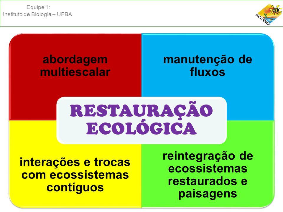 abordagem multiescalar manutenção de fluxos interações e trocas com ecossistemas contíguos reintegração de ecossistemas restaurados e paisagens RESTAURAÇÃO ECOLÓGICA