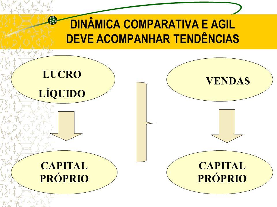 DINÂMICA COMPARATIVA E AGIL DEVE ACOMPANHAR TENDÊNCIAS LUCRO LÍQUIDO CAPITAL PRÓPRIO VENDAS CAPITAL PRÓPRIO
