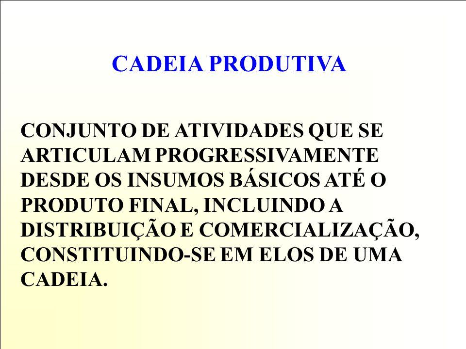 CADEIA PRODUTIVA CONJUNTO DE ATIVIDADES QUE SE ARTICULAM PROGRESSIVAMENTE DESDE OS INSUMOS BÁSICOS ATÉ O PRODUTO FINAL, INCLUINDO A DISTRIBUIÇÃO E COMERCIALIZAÇÃO, CONSTITUINDO-SE EM ELOS DE UMA CADEIA.