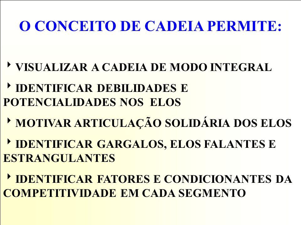 O CONCEITO DE CADEIA PERMITE: VISUALIZAR A CADEIA DE MODO INTEGRAL IDENTIFICAR DEBILIDADES E POTENCIALIDADES NOS ELOS MOTIVAR ARTICULAÇÃO SOLIDÁRIA DOS ELOS IDENTIFICAR GARGALOS, ELOS FALANTES E ESTRANGULANTES IDENTIFICAR FATORES E CONDICIONANTES DA COMPETITIVIDADE EM CADA SEGMENTO