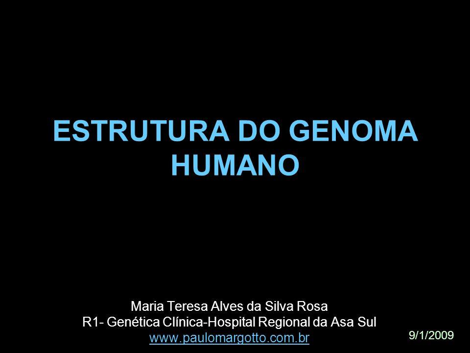 ESTRUTURA DO GENOMA HUMANO Maria Teresa Alves da Silva Rosa R1- Genética Clínica-Hospital Regional da Asa Sul www.paulomargotto.com.br 9/1/2009