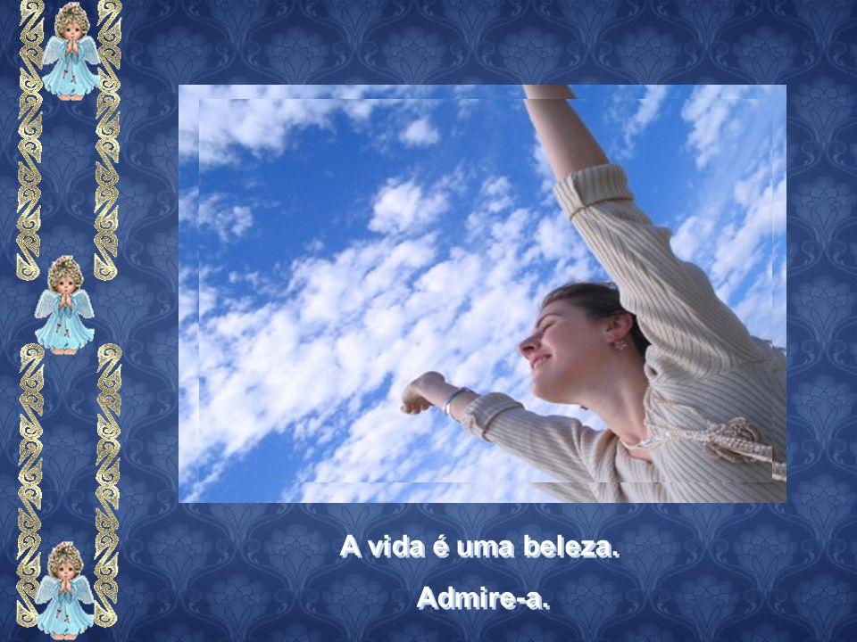 A vida é uma beleza. Admire-a. A vida é uma beleza. Admire-a.