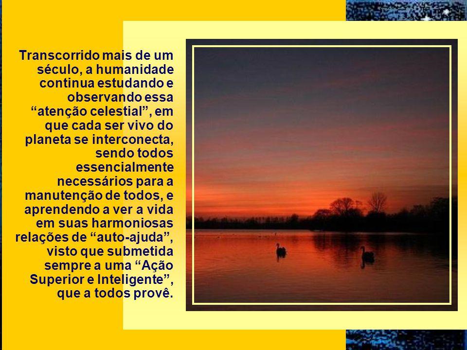 Allan Kardec, um dos precursores do pensamento ecológico, desde 1868, refere-se à Providência Divina como a atenção de Deus para com tudo e todos, def
