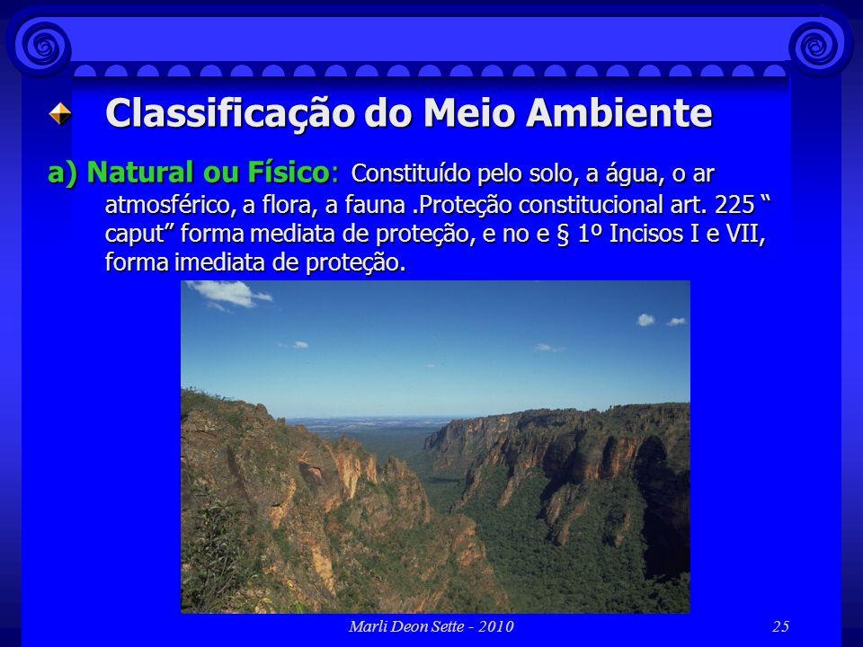 Marli Deon Sette - 201025 Classificação do Meio Ambiente a) Natural ou Físico: Constituído pelo solo, a água, o ar atmosférico, a flora, a fauna.Prote