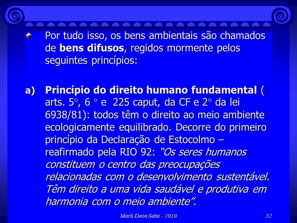 Marli Deon Sette - 201032 Por tudo isso, os bens ambientais são chamados de bens difusos, regidos mormente pelos seguintes princípios: a) Princípio do