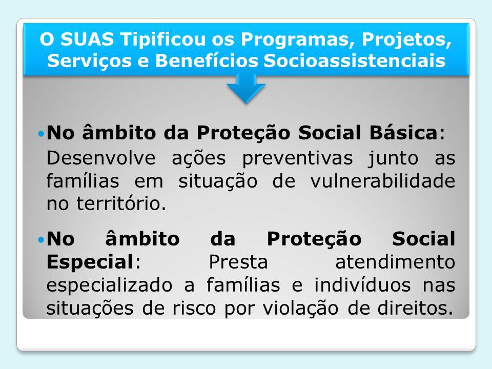 No âmbito da Proteção Social Básica: Desenvolve ações preventivas junto as famílias em situação de vulnerabilidade no território. No âmbito da Proteçã