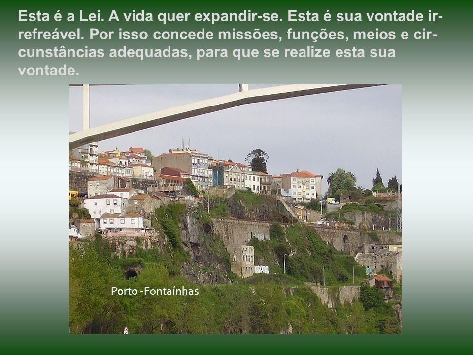 O UNIVERSO é organismo de forças que obedecem apenas à mãos habilidosas e sábias. Porto Porto - Zona histórica da Ribeira à Sé