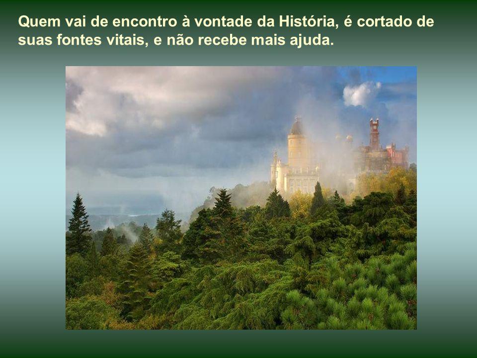 Vejam e admirem as belezas históricas desse rincão português, legítimo patrimônio da humanidade, e continuem a meditar sobre os textos inspirados de P