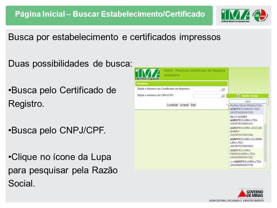 Página Inicial – Buscar Estabelecimento/Certificado Busca por estabelecimento e certificados impressos Duas possibilidades de busca: Busca pelo Certif