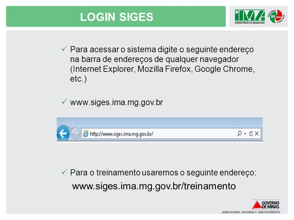 LOGIN SIGES Para acessar o sistema digite o seguinte endereço na barra de endereços de qualquer navegador (Internet Explorer, Mozilla Firefox, Google