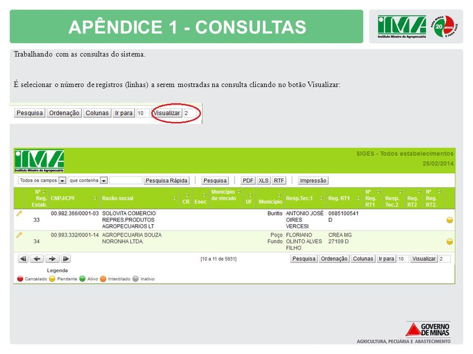 APÊNDICE 1 - CONSULTAS Trabalhando com as consultas do sistema. É selecionar o número de registros (linhas) a serem mostradas na consulta clicando no